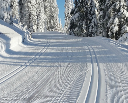 wolf creek pass snow report